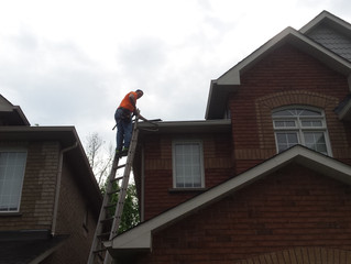 Roof repair : Getting rid of mold on shingles | 1-855-wanna-reno? Eavestrough Roofing Siding Soffit