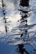 Forming ice in wetland, Ivry-sur-le-Lac, Québec
