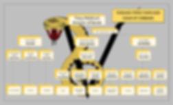 Chain of Command2019_2020.jpg