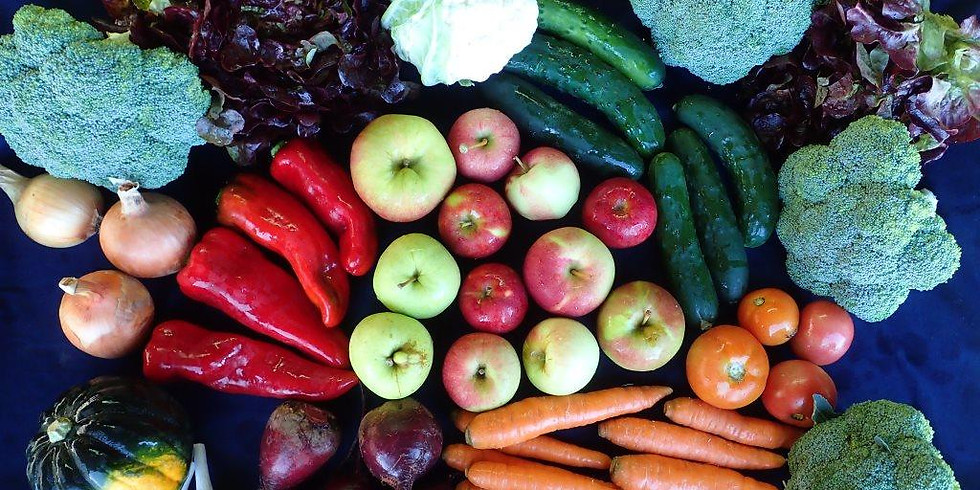 CSA Ideas Lab: Moving from Food Access to Food Justice