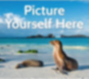 SIG Travel Magazine January-February 201