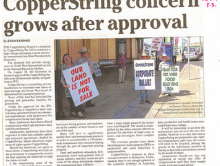 CopperString Concern Grows After Approval