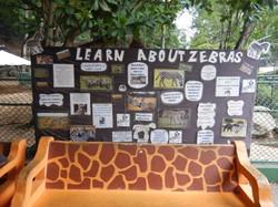 Learn About Zeebras