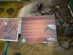 Zoo Centenarians!
