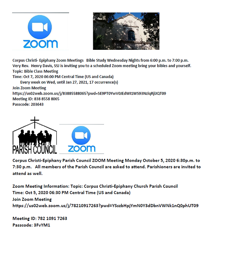 Zoom Meeting Flyer.png