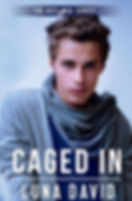 Caged-In-EBook-Cover (3).jpg