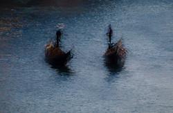 'Venice Multiplied'