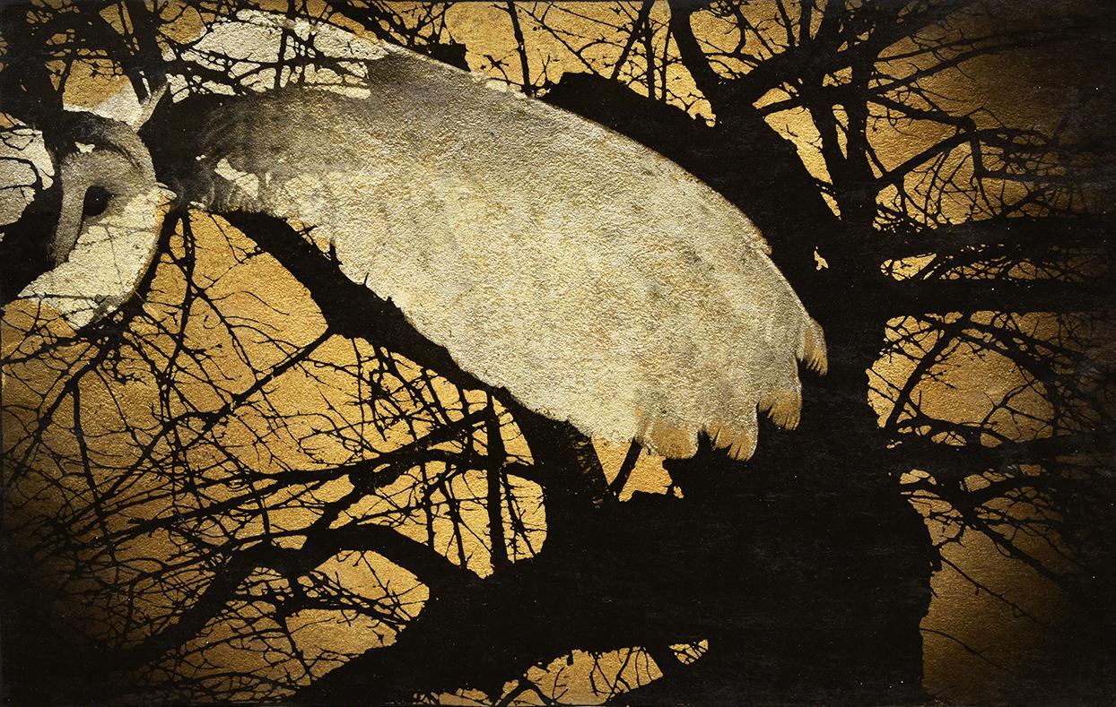 'Nocturne 1'