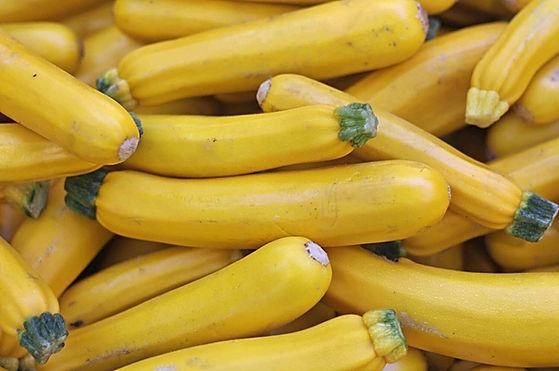 Yellow-Zucchini-576dffb15f9b585875e983af