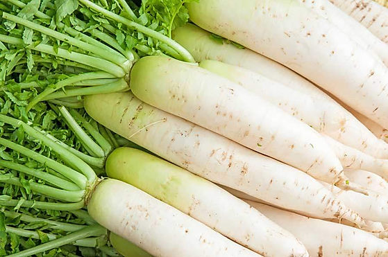 Jesmond-Fruit-Barn-White-Radish.jpg