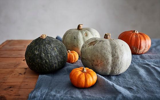 pumpkins_trans_NvBQzQNjv4BqvhCrx-Cy0yBjH