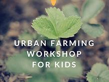 workshop for kids (1).jpg