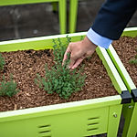 Grow Kit C Galvanised Steel Planters.jpg