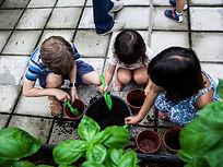 Urban Farming Workshop_1.JPG