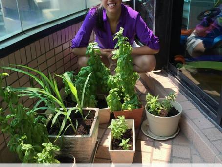 Featured Urban Gardener: Alvina Chan