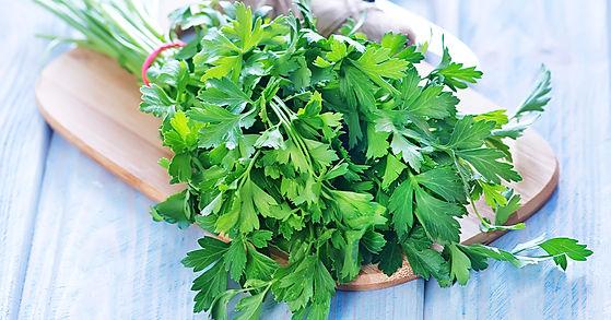 parsley-herb-1200x628-facebook.jpg