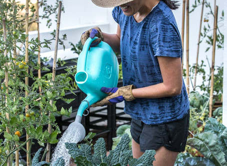 Featured Urban Gardener: Meet Gina!
