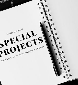 Special projects on workforce & talent are our specialty