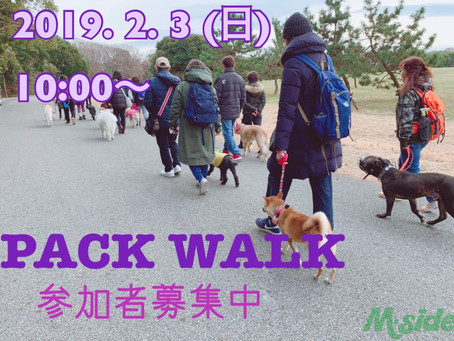 PACK WALK 〜51〜参加者募集!
