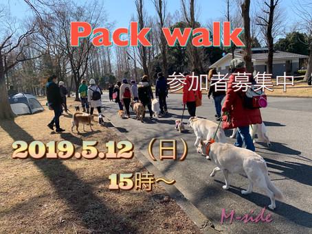 5/12(日) PACK WALK〜54〜参加者募集中