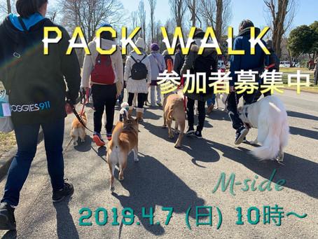4月7日(日)PACK WALK〜53〜参加者募集!