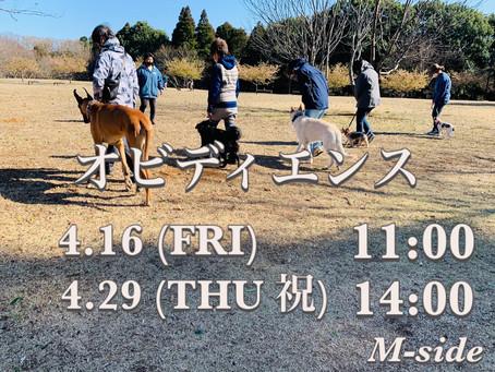 4/16.4/29 オビトレ