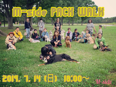M-side PACK WALK〜56〜参加者募集