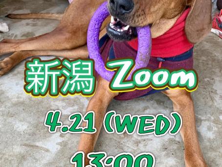 4/21 新潟zoom勉強会