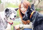 トレーナーに断られた経験があるからこそ今の私がいます。噛む・吠える・引っ張る・歩かない・懐かない・触れない・飛びかかる どんな犬でもおまかせください。出張地域 東京.埼玉.栃木.神奈川.茨城.関東 犬のしつけトレーナー