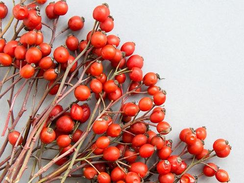 Kullu Dried Rosehips