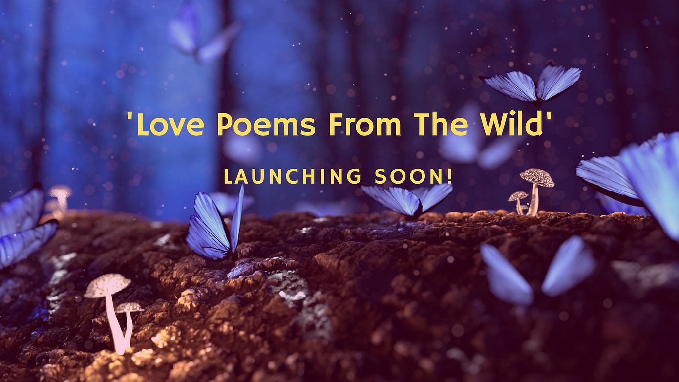 ' Love Stories From The Wild' (1).png