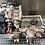 Thumbnail: Boite de vitesses automatique FIAT Freemont 2.0 Mjet DPF 163 4X4 16V 163cv