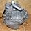 Boite de vitesses Alfa Romeo MiTo 1.3 JTDM 95 cv M32