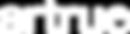 artrue-logo_White_color.png