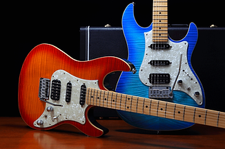 fgn guitars israeli stock