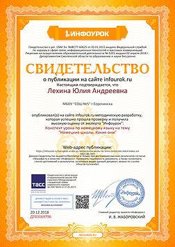 Свидетельство проекта infourok.ru №ДГ031