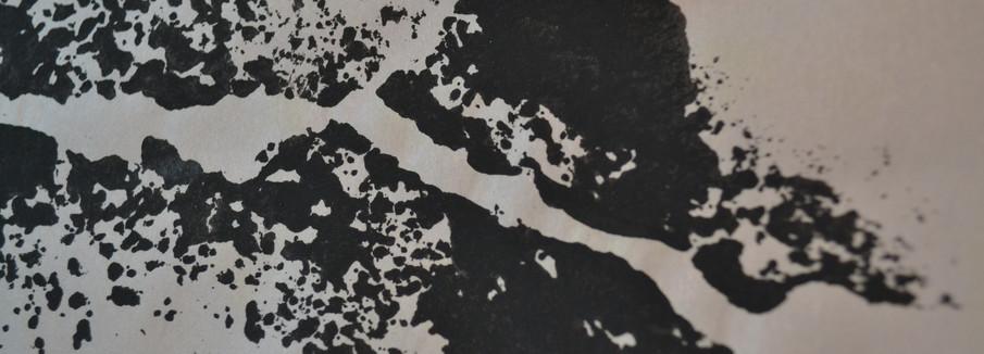 Cosmografias |2016-2018 | Monotipia | Papel jornal, papel de arroz,tinta guache | Dimensões variáveis