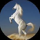 White Horse Circle.png