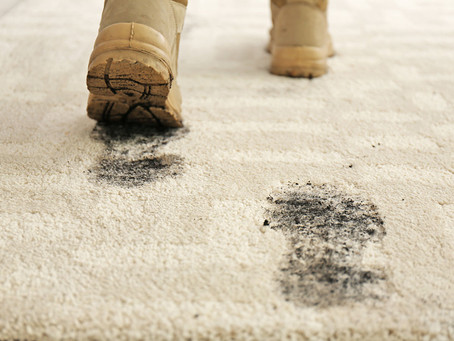 The Health Dangers of Dirty Carpet in Your Home