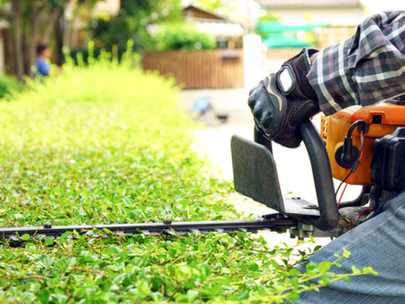 Benefits Offered by Hiring Professionals to Care for and Maintain Your Lawn