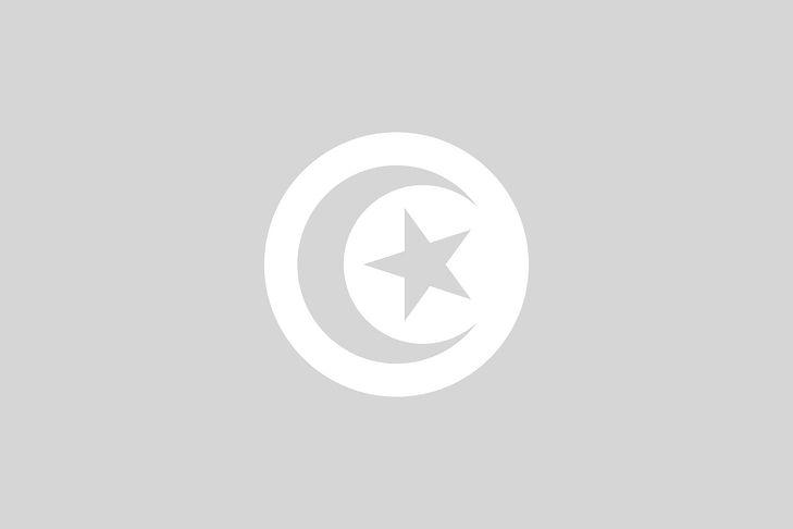 tunisia-162444_1280_edited.jpg