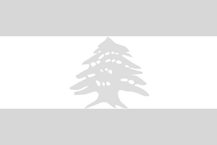 lebanon-26832_1280-2_edited.jpg