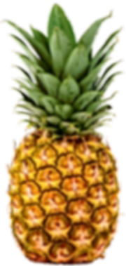 kisspng-juice-pineapple-clip-art-cotton-