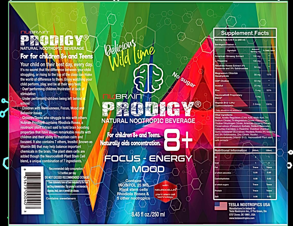 nubrain prodigy nootropic