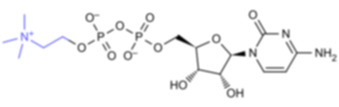 Nubrain Ultimate® Nootropic