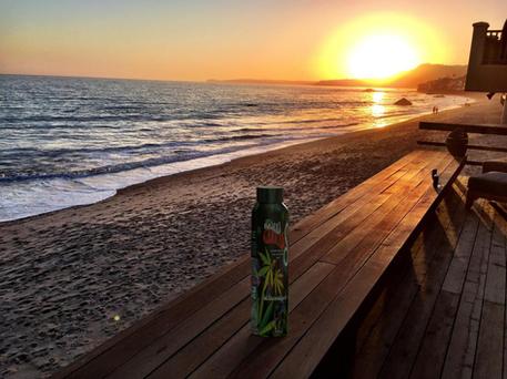 California Cannabis, Malibu
