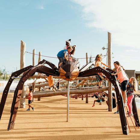 Wolf Spider at Scissortail Park, Oklahoma