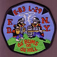 da bums on da hill FDNY.jpg