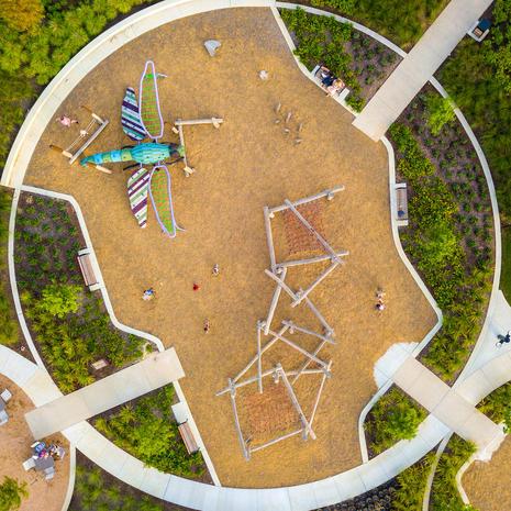 Bridgeland Park Dragonfly, Texas