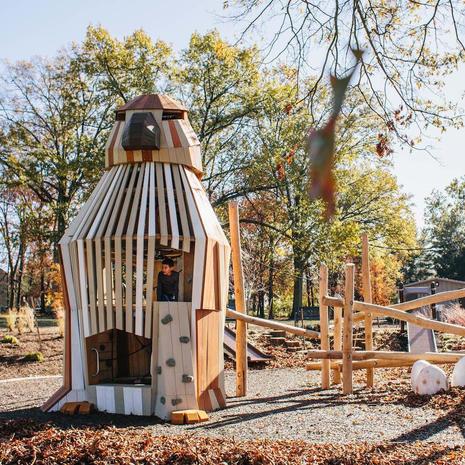 Red-tailed Hawk at Johnston-McVay park, Ohio
